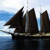 The Crew Ship